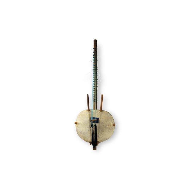 harp-lute; kora
