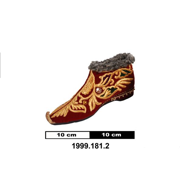 shoe (clothing: footwear)