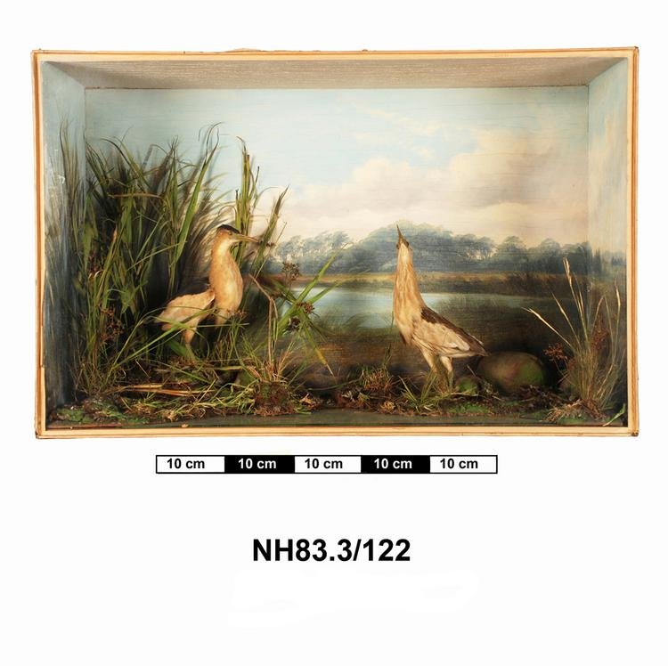 General view of object no. NH.83.3/122.