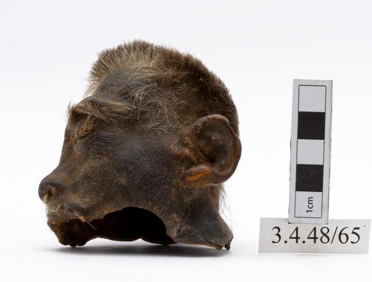 Left side view of whole of Horniman Museum object no 3.4.48/65