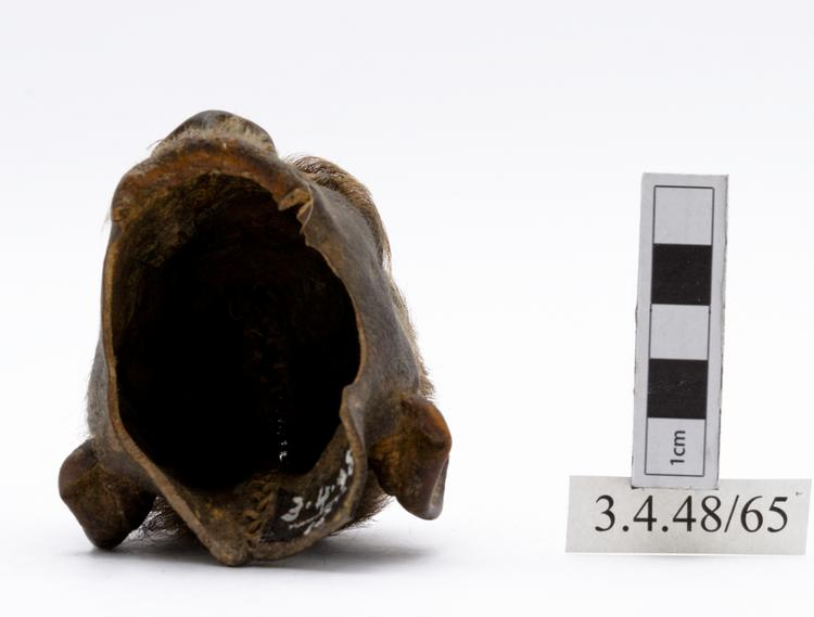 Bottom view of whole of Horniman Museum object no 3.4.48/65