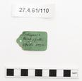 General view of label of Horniman Museum object no 27.4.61/110