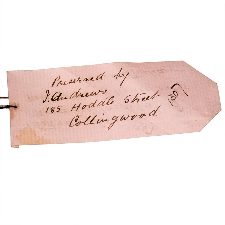 Detail view of label of Horniman Museum object no NH.Z.1307