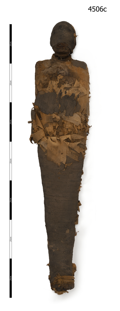 General view of whole of Horniman Museum object no 4506c