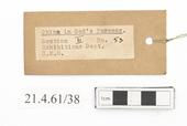 General view of label of Horniman Museum object no 21.4.61/38