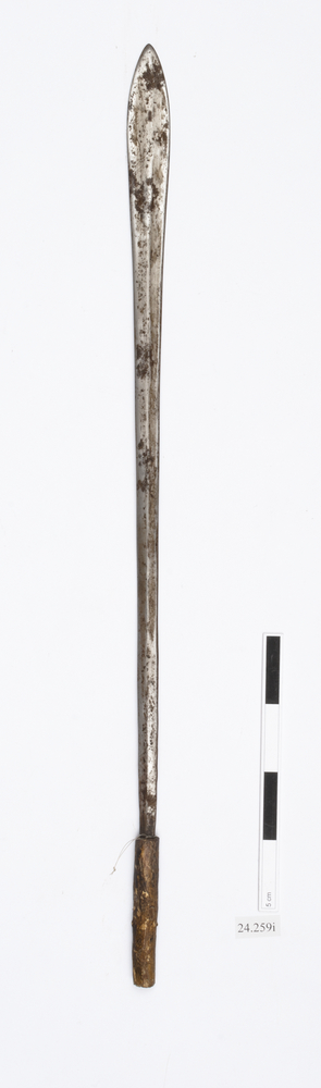 sword (weapons: edged)