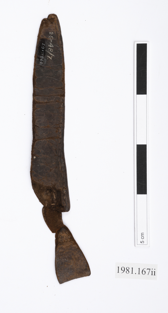 General view of Whole of Horniman Museum object no 1981.167ii