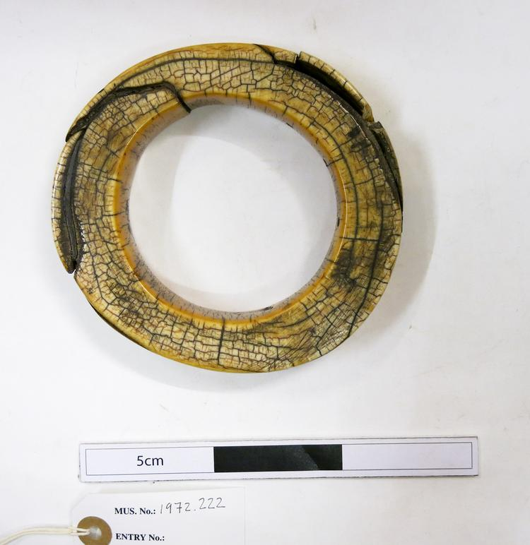 Top view of whole of Horniman Museum object no 1972.222
