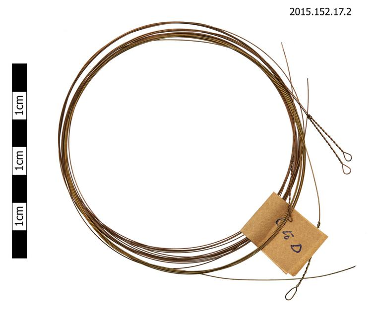 strings (elements of musical instruments)