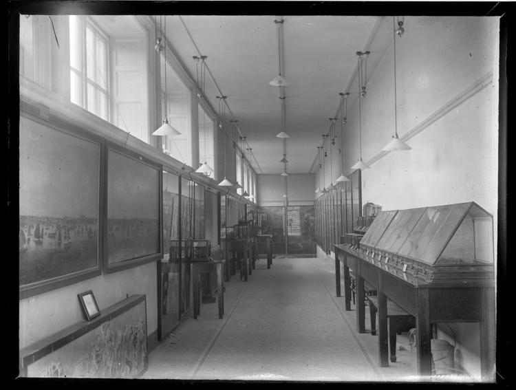 Front view of whole of Horniman Museum object no ARC/HMG/PH/GPL/003