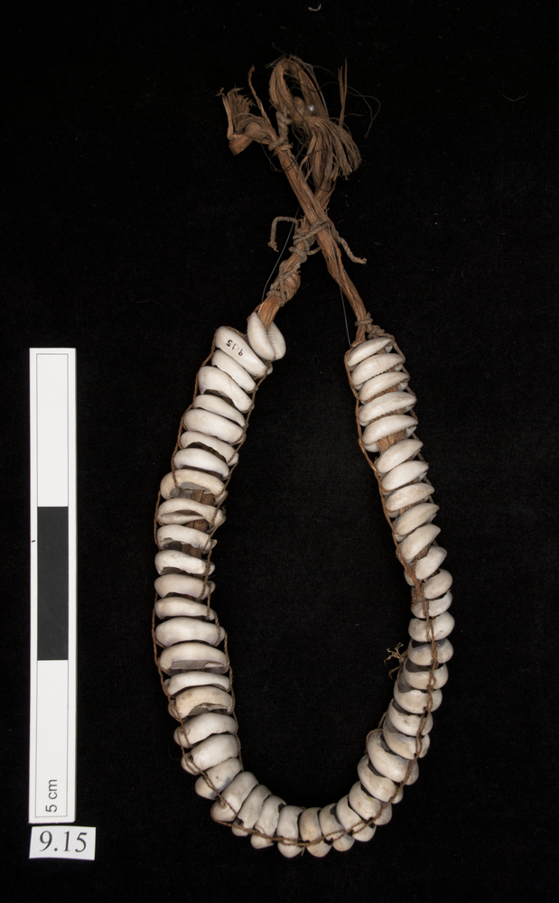 General view of whole of Horniman Museum object no 9.15