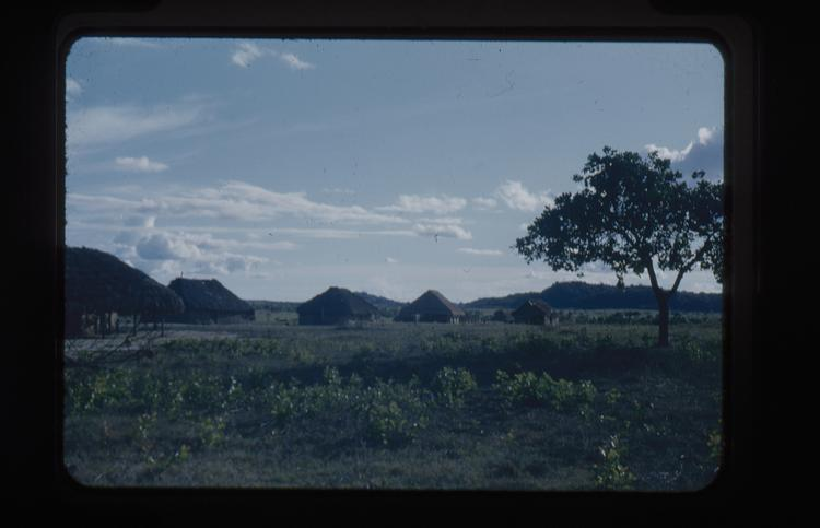 Colour slide of village with tree in foreground