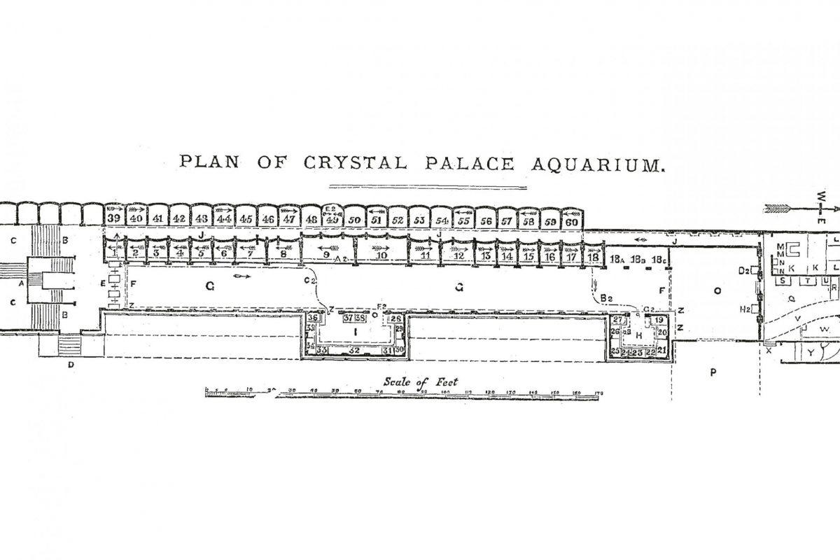 A plan of Crystal Palace Aquarium
