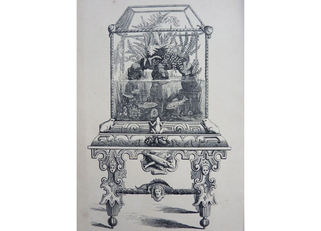 A drawing of an old ornate aquarium case