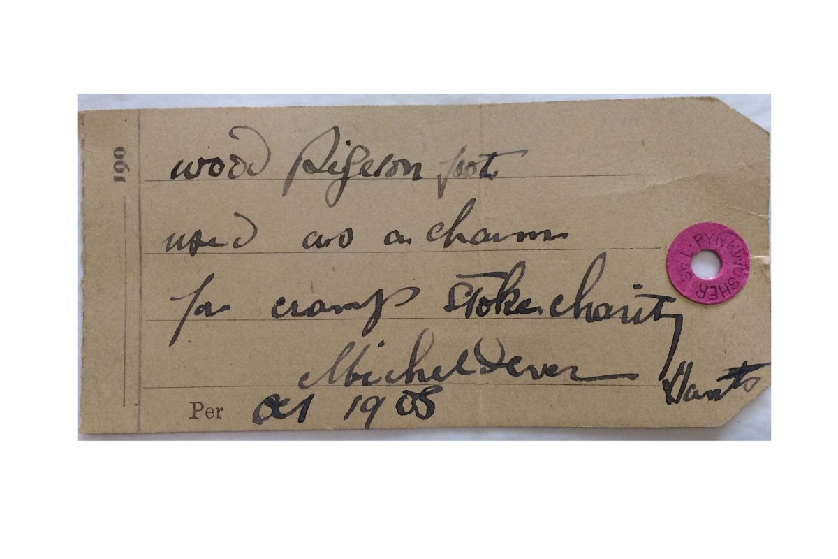A label from the collections with a handwritten text about a wood pigeons foot