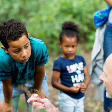 A boy looks closely at a plant held by a man knelt on the ground. A young girl looks on. They are all outside in a green area