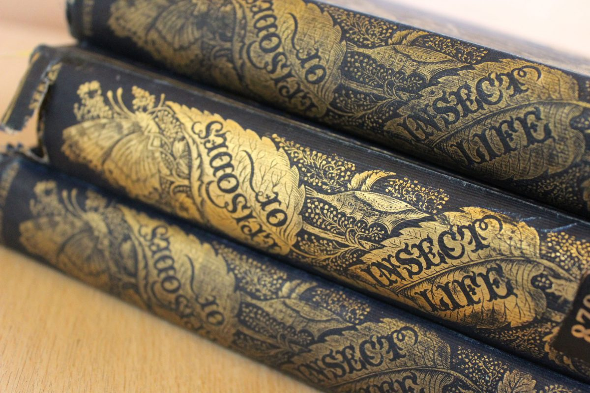 A stack of three ornate books, in blue leather with gold embossed text and drawings on the spines. They read Episodes of Insect Life