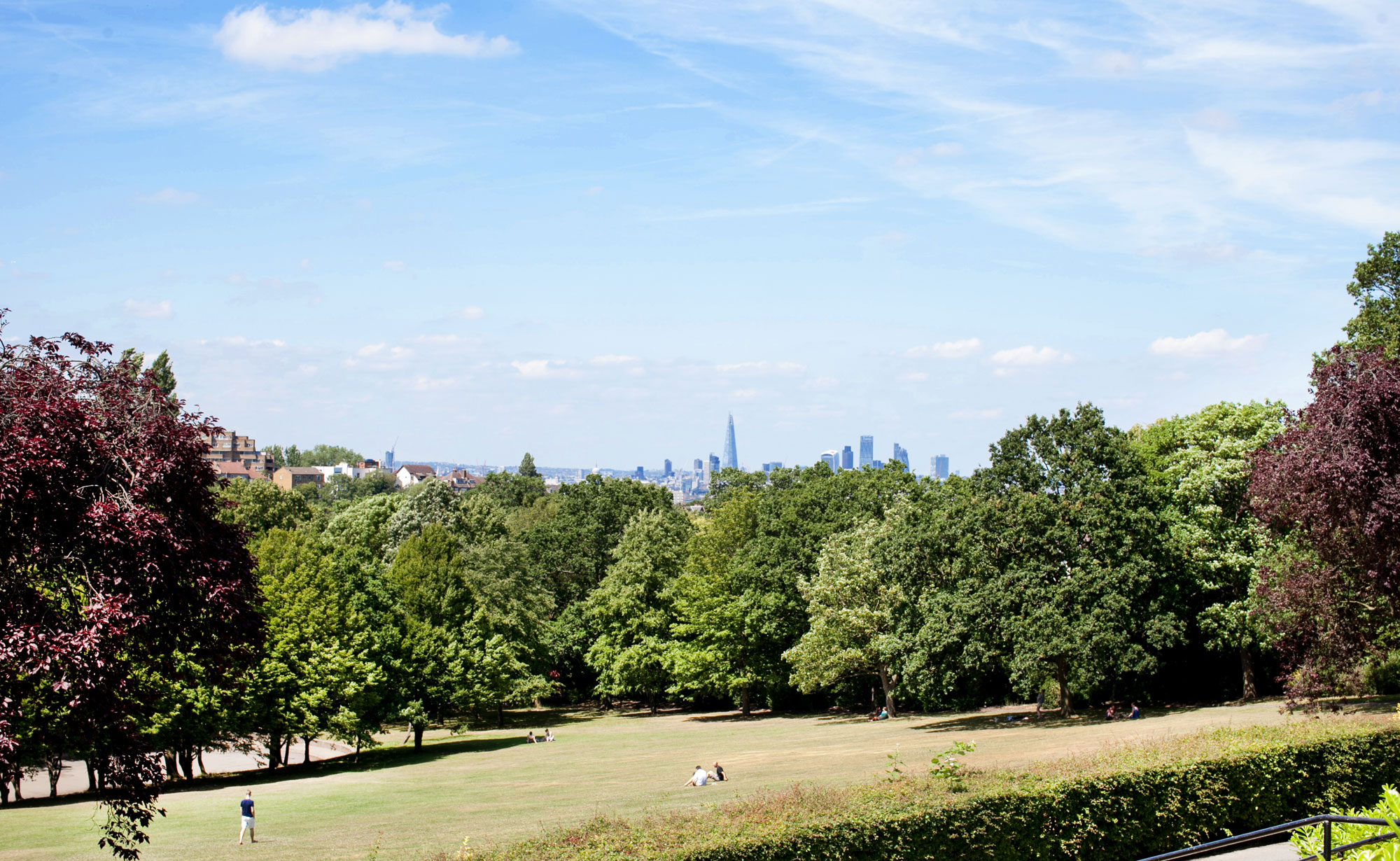 Grass that is yellowing in the sun slopes down towards a line of trees in the distance, with a view of the London skyline in the far distance. The sky is blue with wisps of cloud.