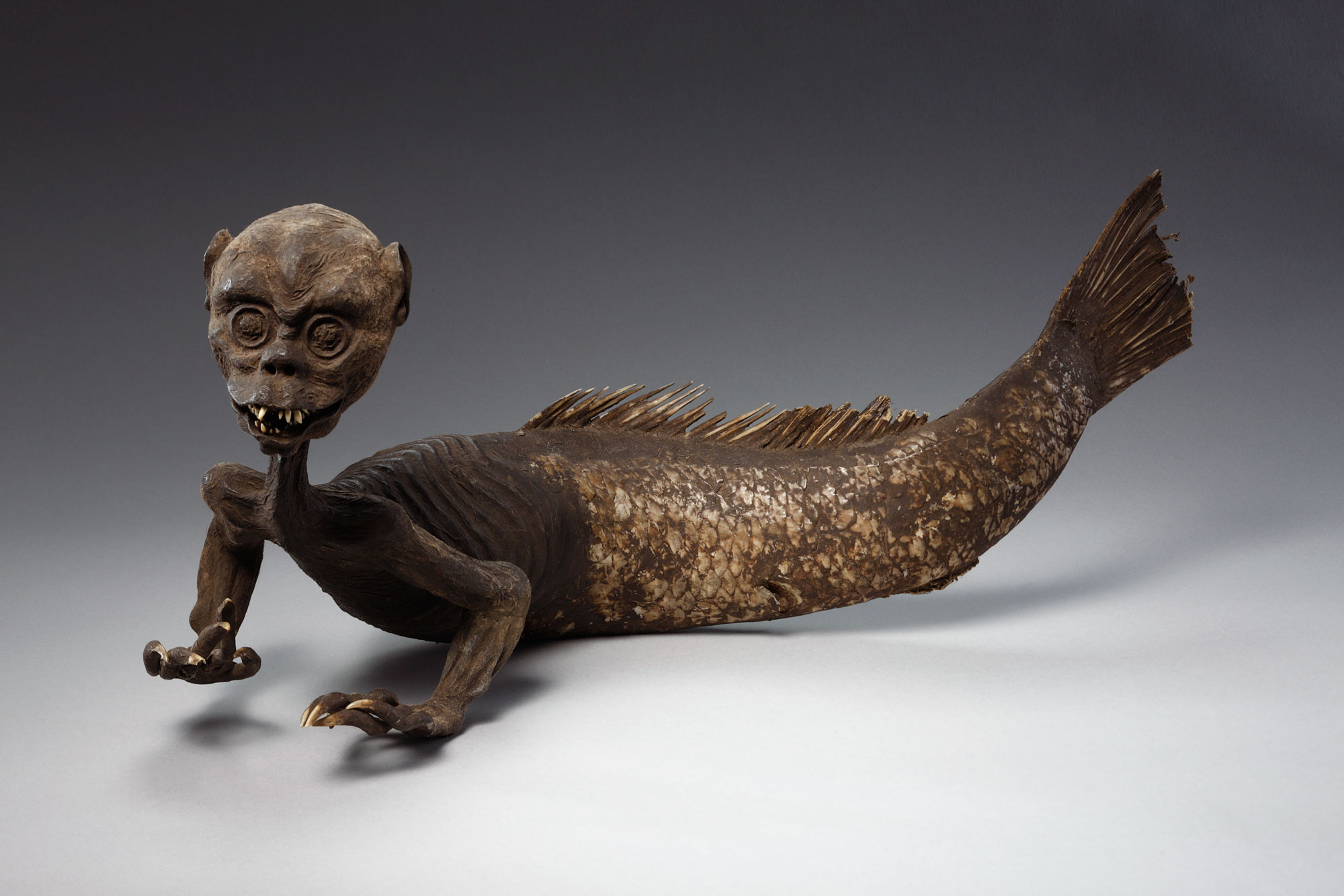 a creature with the tail of a fish and the head and torso of a small male, made to look like a real merman