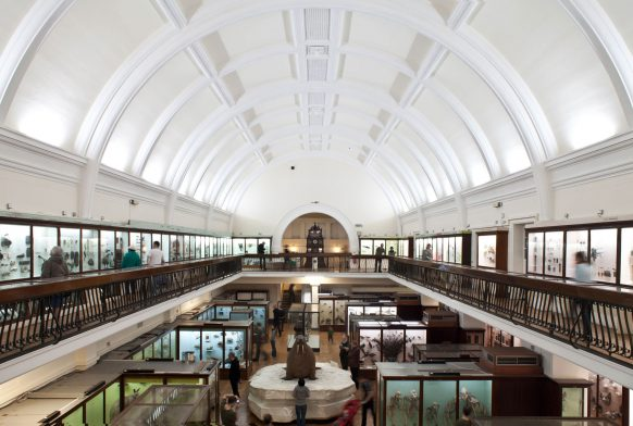 The History of the Natural History Gallery