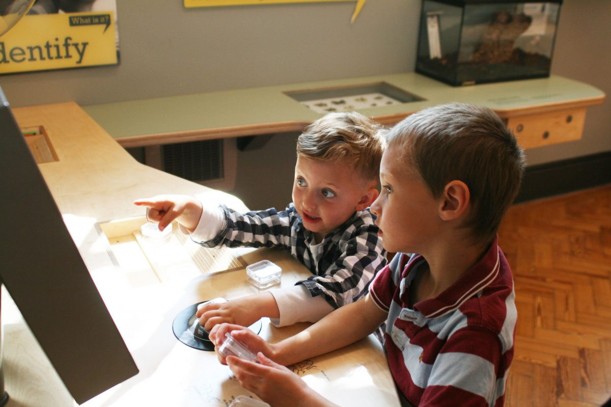 Two boys stand at a wooden table looking at a screen (just seen). They are comparing something in their hands with what's on the screen