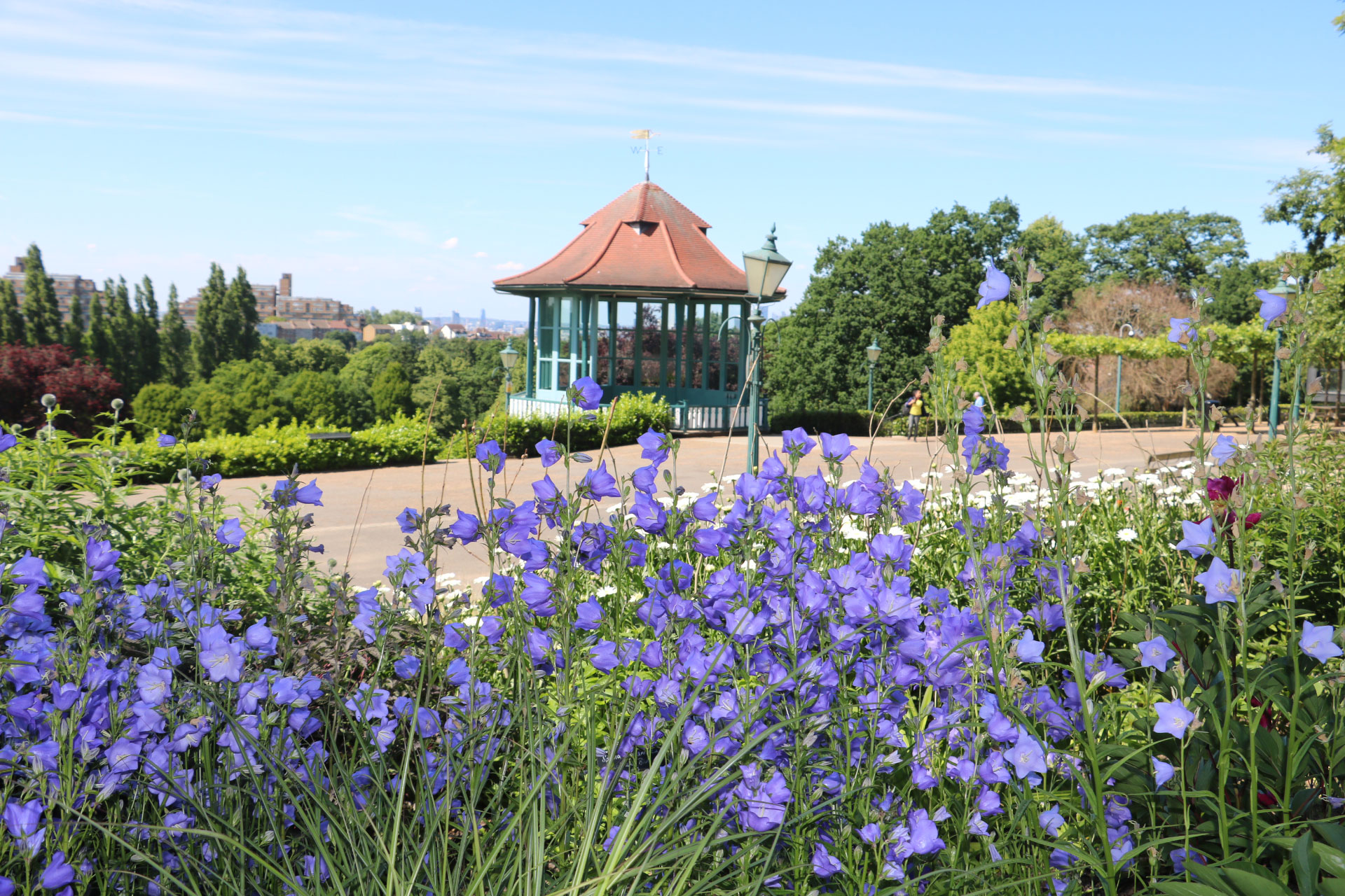 Small purple flowers are in the foreground growing in a raised flower bed, with a terrace and bandstand behind, and trees framing the distance.