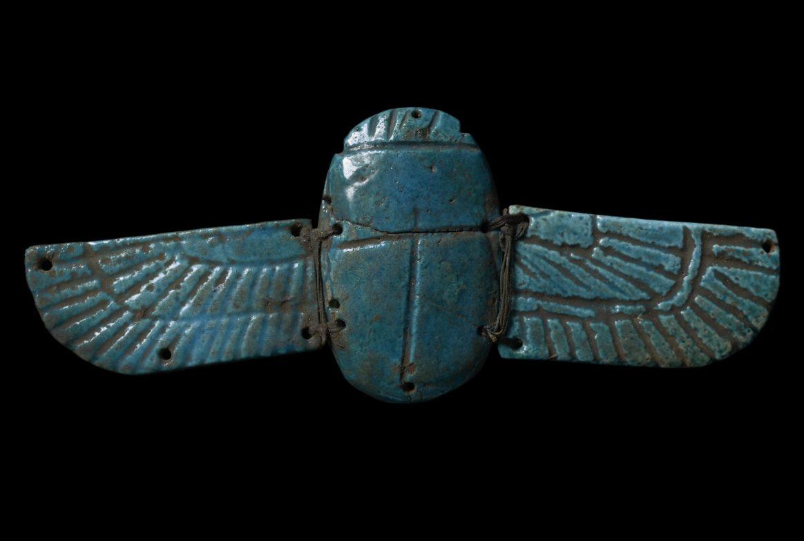 Blue winged scarab