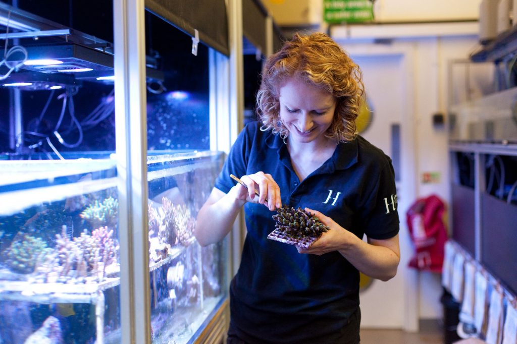 A woman holds a piece of coral next to aquarium tanks