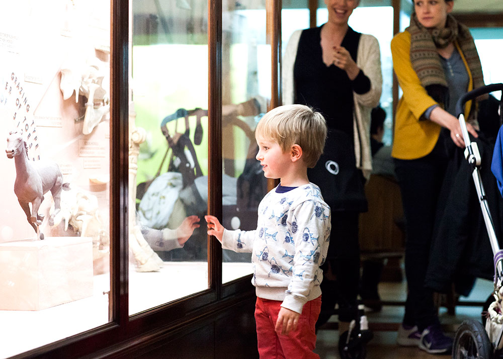 A small boy looks through glass into a cabinet with a horse model inside. Two adults stand behind him - both are women, one is pushing a push chair and the other is pointing at the child