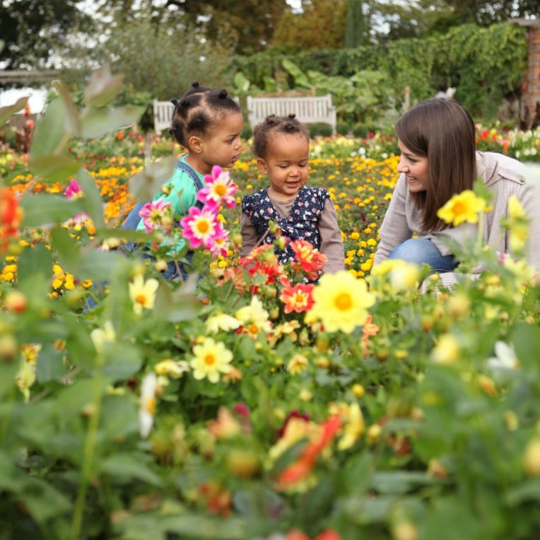 A woman and two young children are sat in amongst flower beds. The flowers are yellow, pink and orange. THere are bushes, trees and benches in the background.