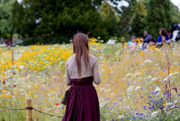 a woman has her back to the camera and is looking out over a flower bed full of wildflowers of different hues and varieties