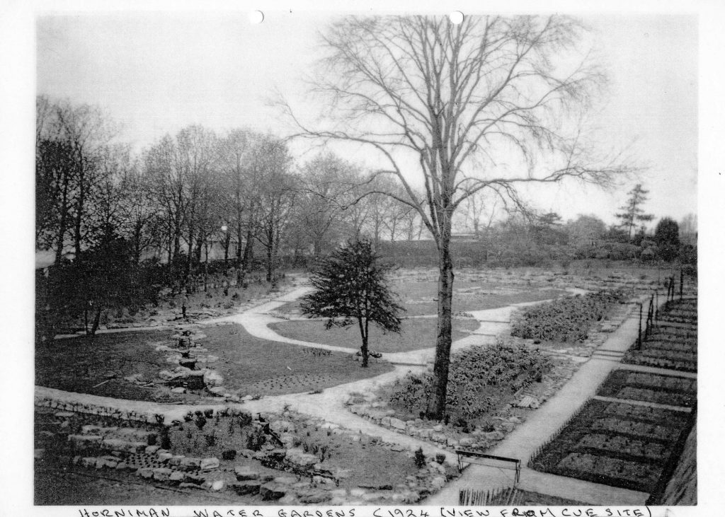 A black and white photograph of some ornamental gardens with some small trees, paths and steps