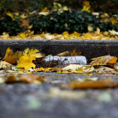 A plastic bottle lies discarded in a gutter surrounded by yellow leaves