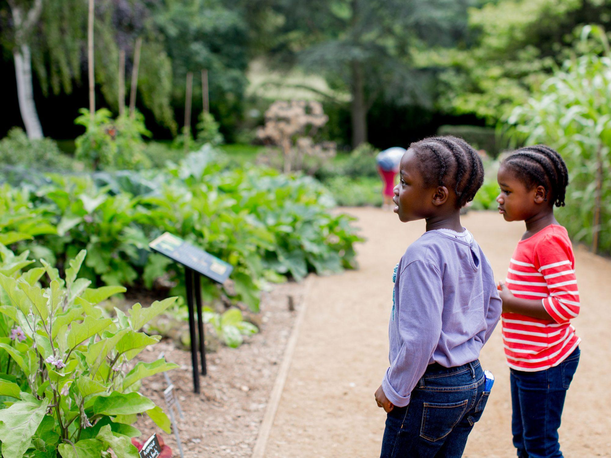 Children exploring the Gardens