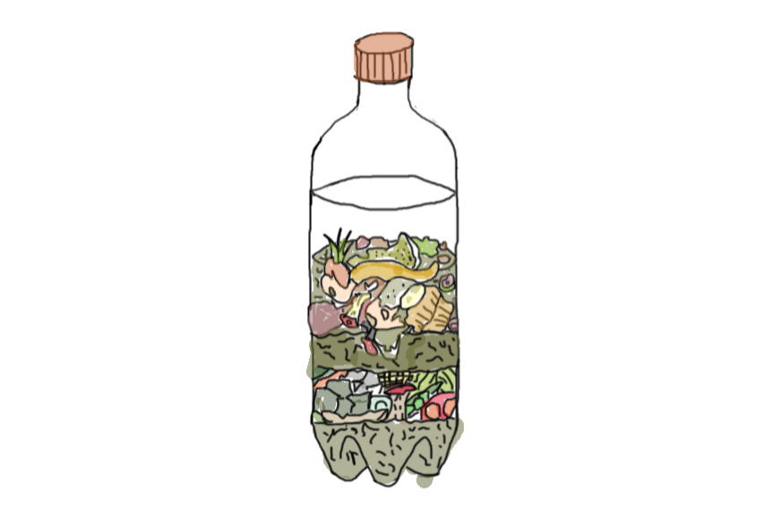 Illustration of bottle filled with leaves and fruit on white background