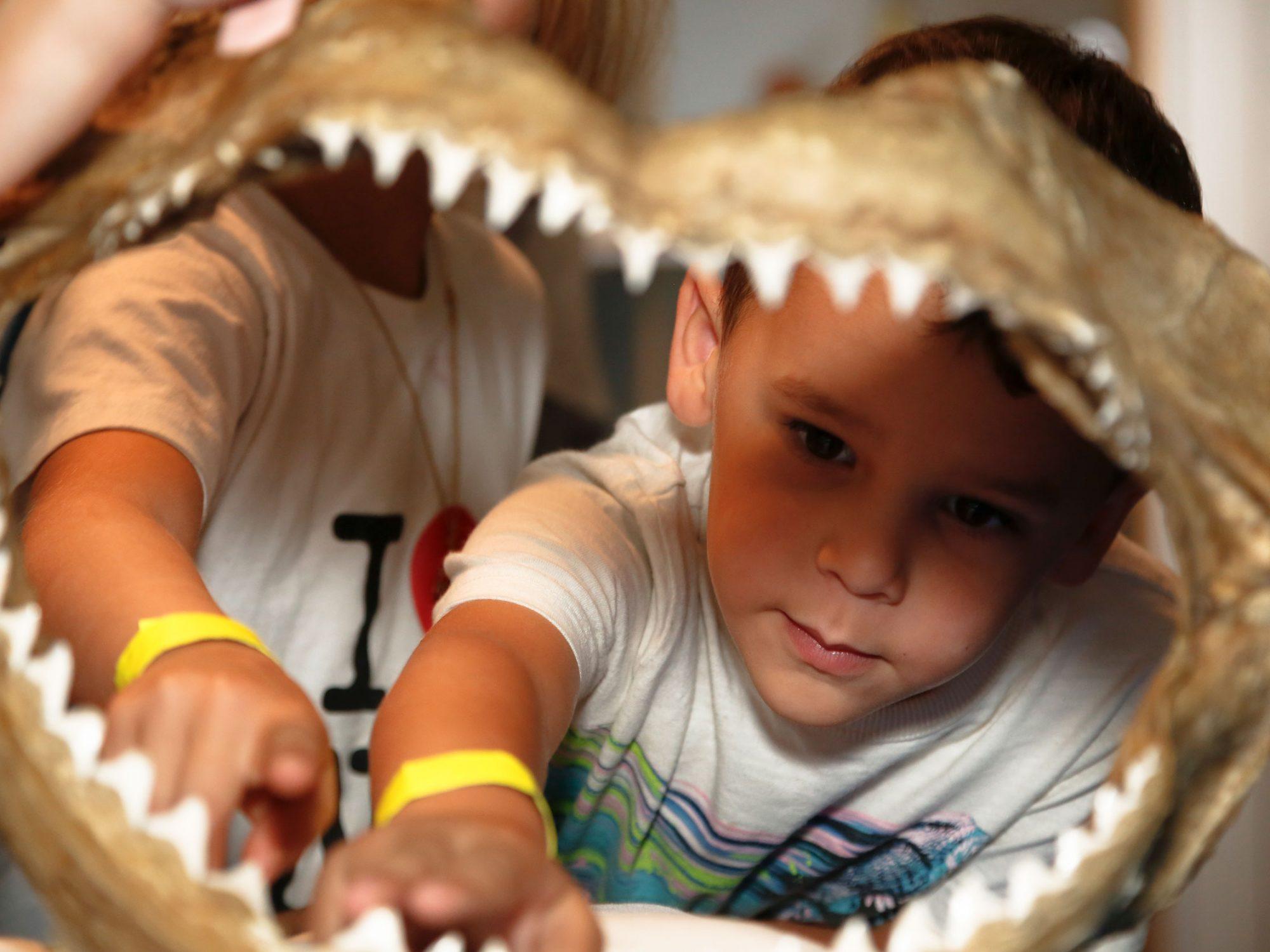 Two children looking through a shark's jaw bone