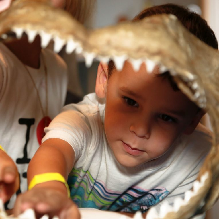 Two children looking through a shark's jaw bone