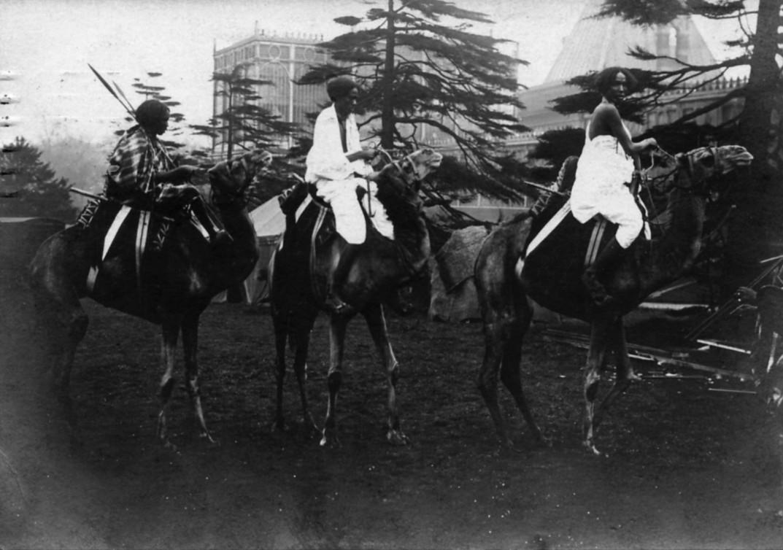 Black and white image of 2 women riding horses