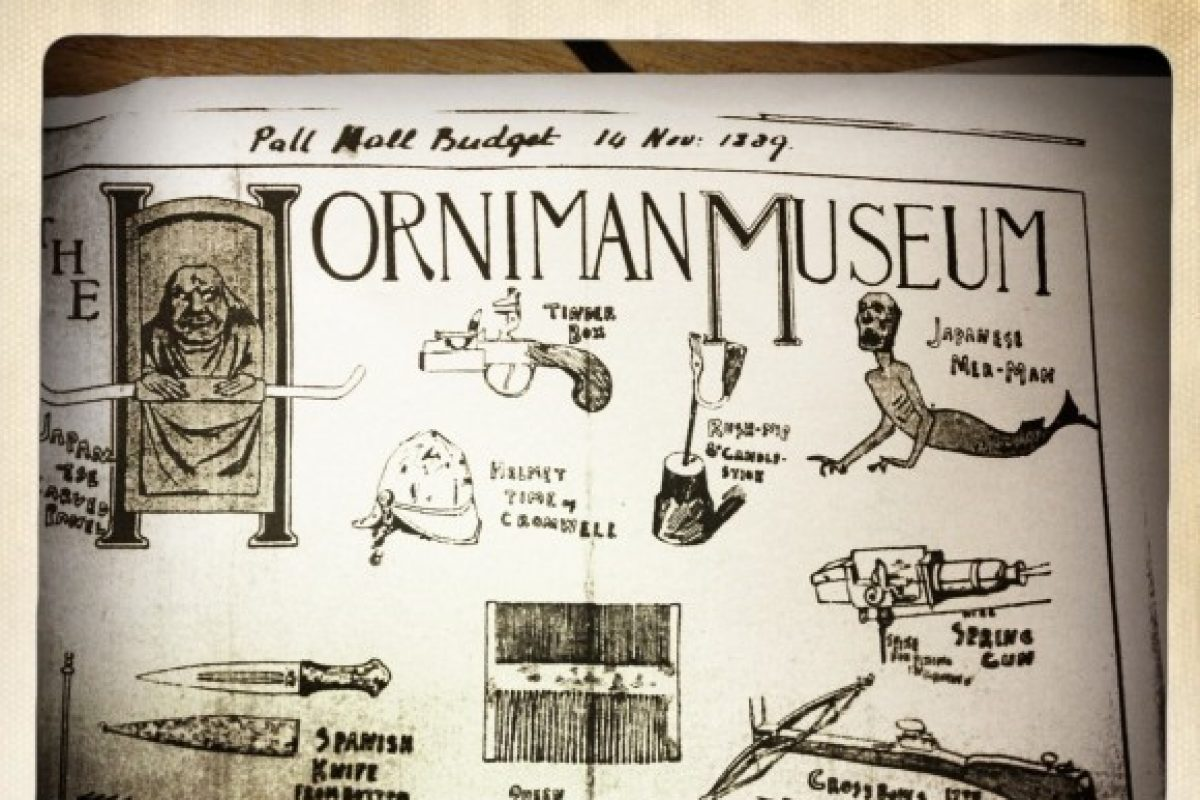 An old drawing of objects with Horniman Museum written at the top