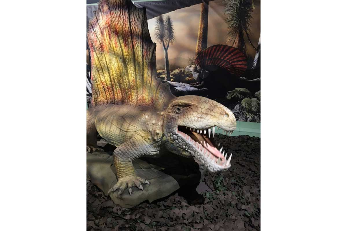 Image shows the Dimetrodon from the Permian Monsters exhibition at the Horniman Museum in 2020