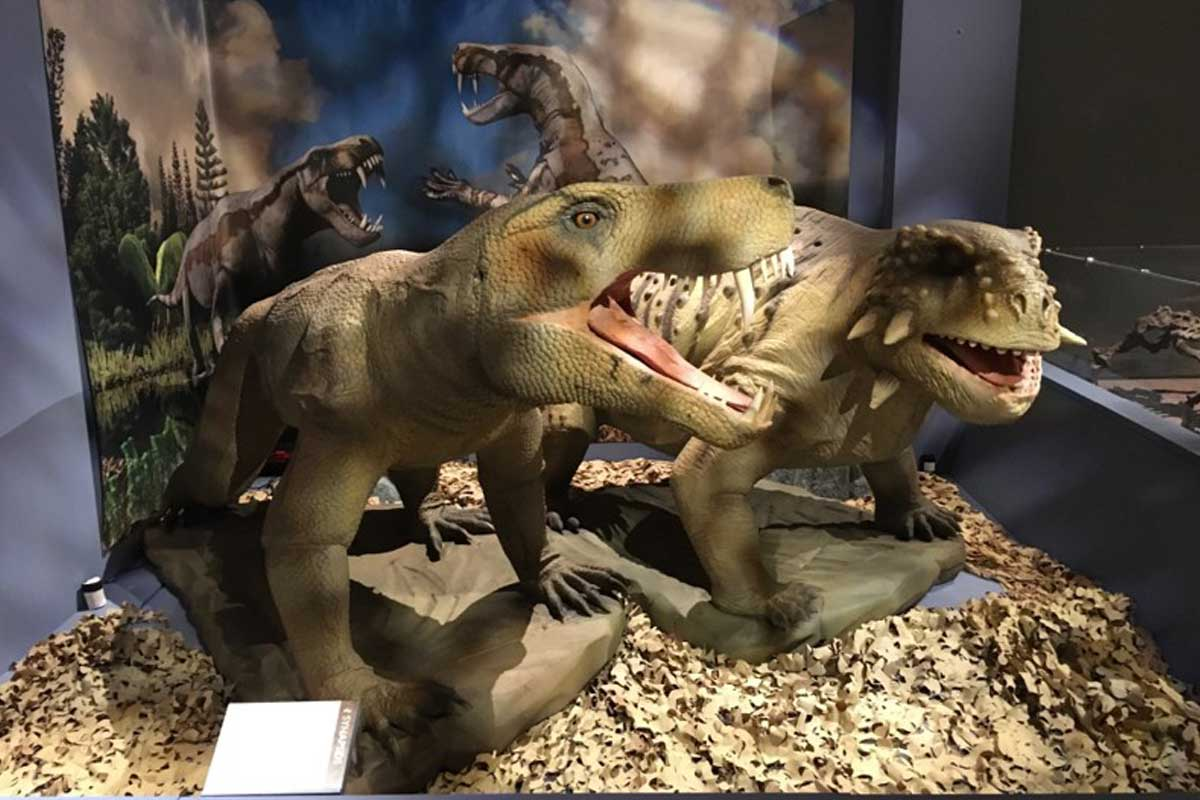Two of the models from the Permian Monsters exhibition