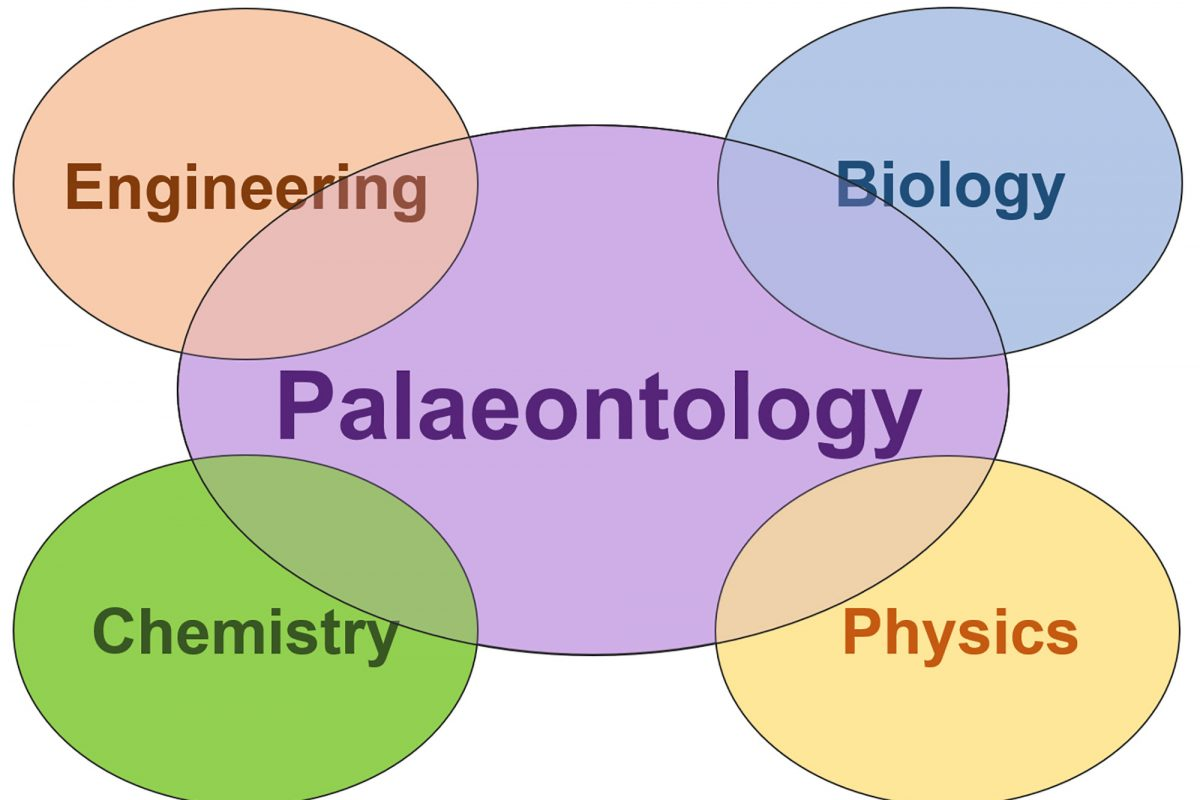 A graphic showing palaeontology intersected by engineering biology chemistry and physics